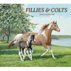 Fillies & Colts